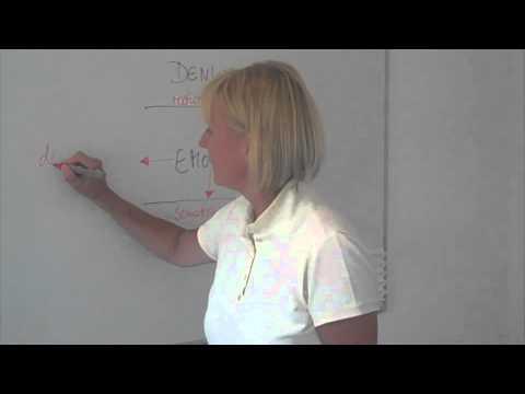 Logik der Gefühle 2: Wie wir Gefühle verschieben